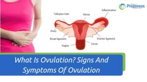 What Is Ovulation_ Signs And Symptoms Of Ovulation