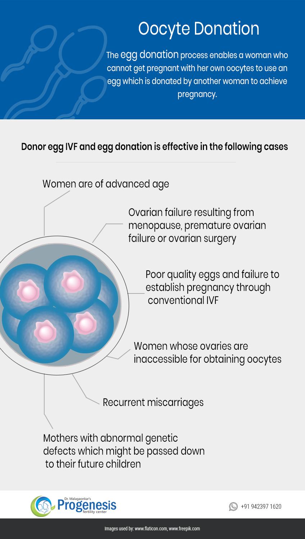 Oocyte-Donation